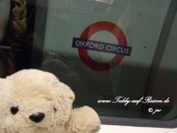 Teddy in der Londoner Tube