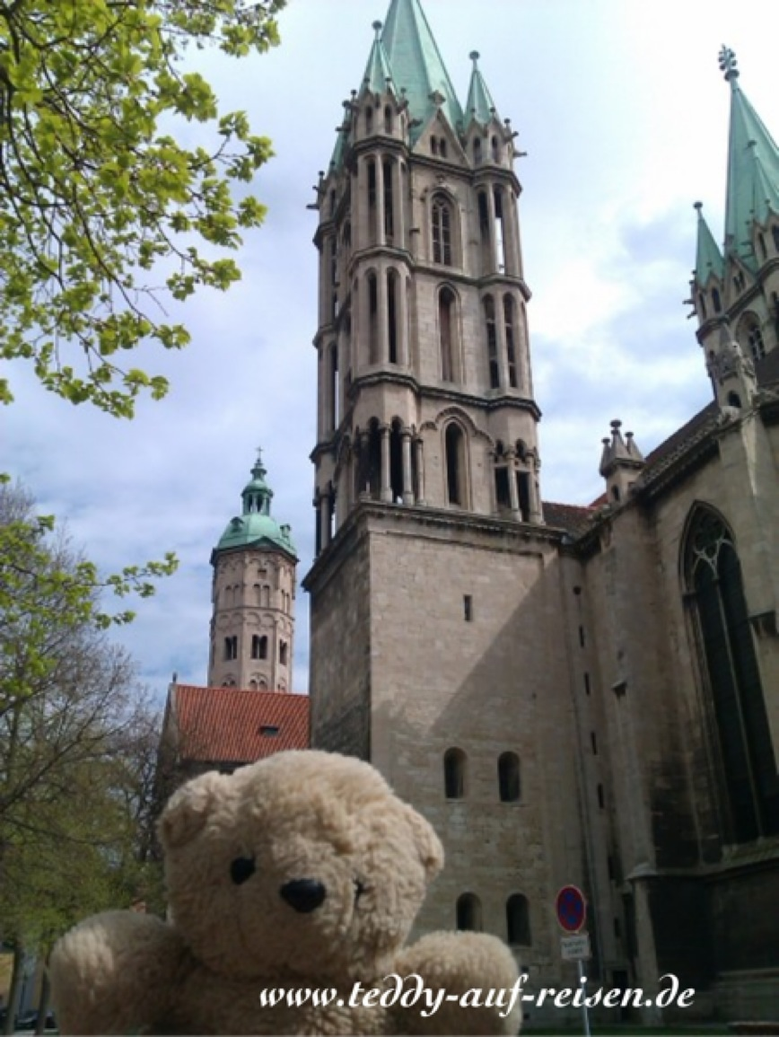 Teddy vor dem Naumburger Dom